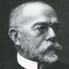 Robert Koch Nueva Medicina Germanica NMG Hamer Leyes Biologicas 5LB Premio Nobel