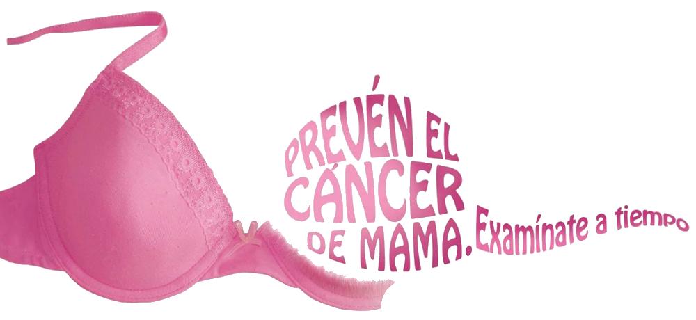 Seno Femenino Mujer Cancer Mama Mamario Intraductal Glandular Mamografia Pecho Pezon Tumor Maligno Benigno Nueva Medicina Germanica NMG Hamer Leyes Biologicas 5LB Deteccion Temprana Prevencion