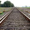 Nueva Medicina Germanica NMG Railes Pistas Tracks